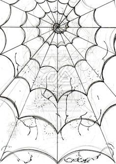 Drawn spider detailed Web diferent on D Best