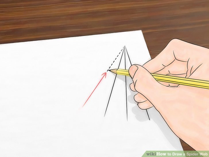 Drawn spider detailed Ways wikiHow Image a Web