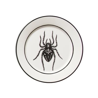 Drawn spider dinner plate #11