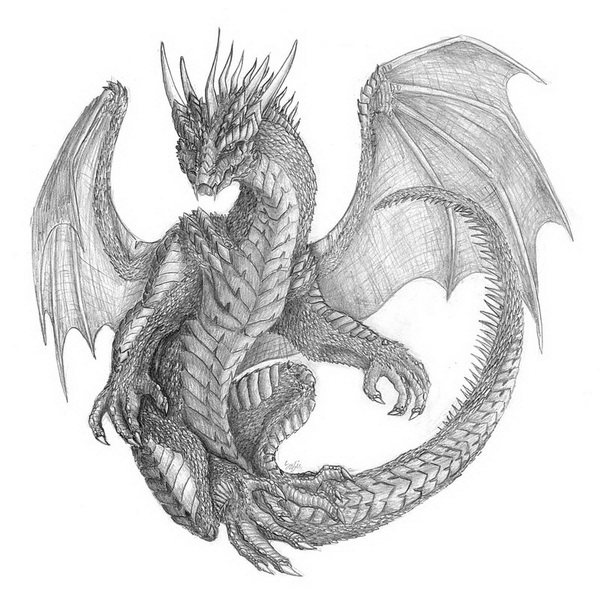 10+ Drawings Cool Dragon Inspiration