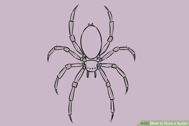 Drawn spider easy WikiHow to Image Ways a