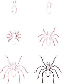 Drawn spider easy Learn Spider draw: a Spider