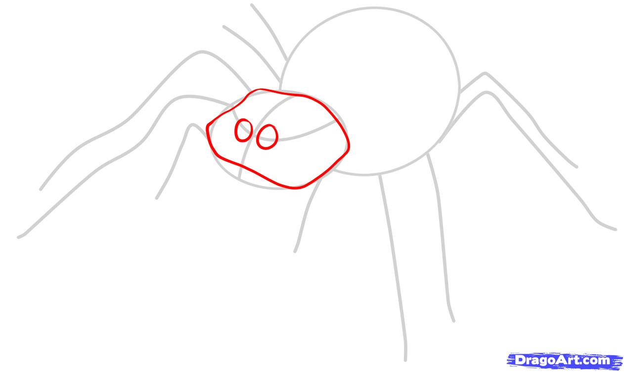 Drawn spider easy Spider by to how How