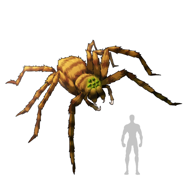 Drawn spider giant spider #8
