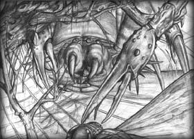 Drawn spider giant spider #13