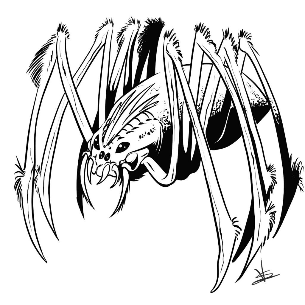Drawn spider giant spider #14