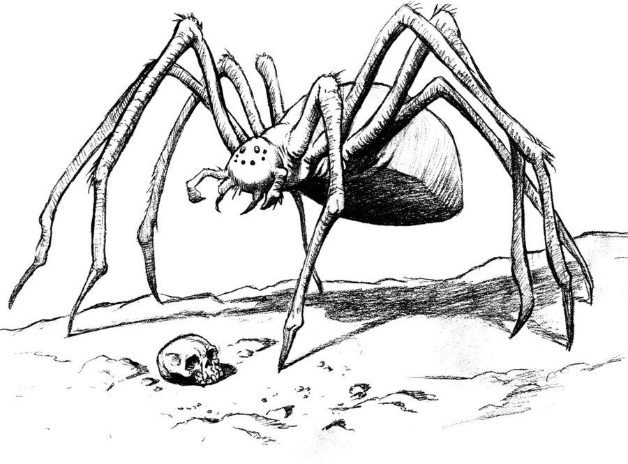 Drawn spider giant spider #7