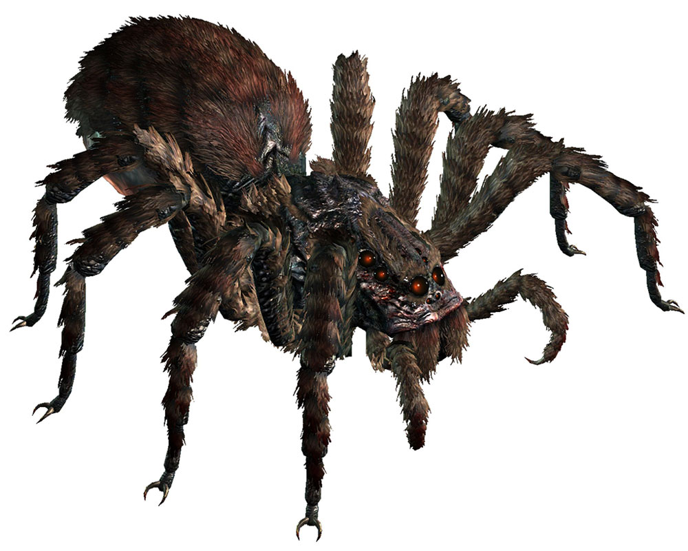 Drawn spider giant spider Giant a in of a