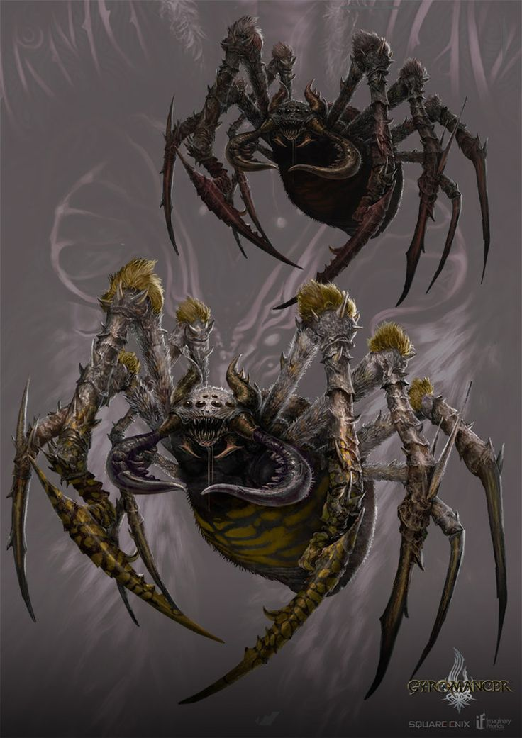 Drawn spider giant spider And for the Pinterest Enix's