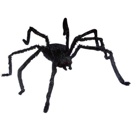 Drawn spider halloween decoration Halloween 12