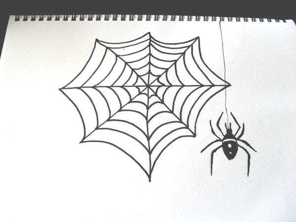 Drawn spider halloween decoration And Draw how Image how