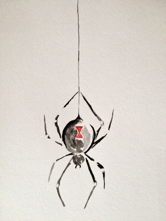 Drawn spider identification Widow Painting Watercolor on Spider