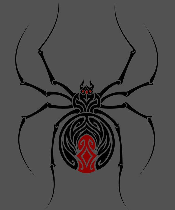 Drawn spider identification Widow widow deviantart verreaux Black