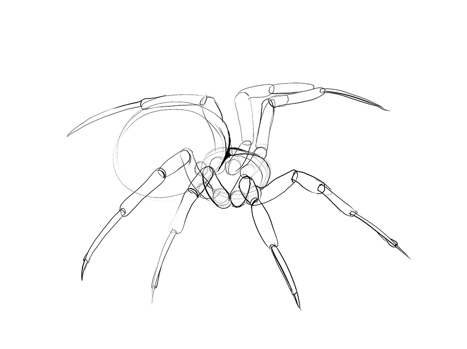 Drawn spider insect #3