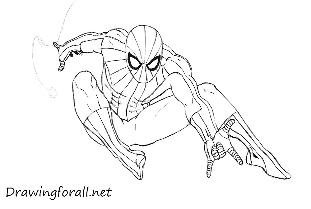 Drawn spider line drawing #9