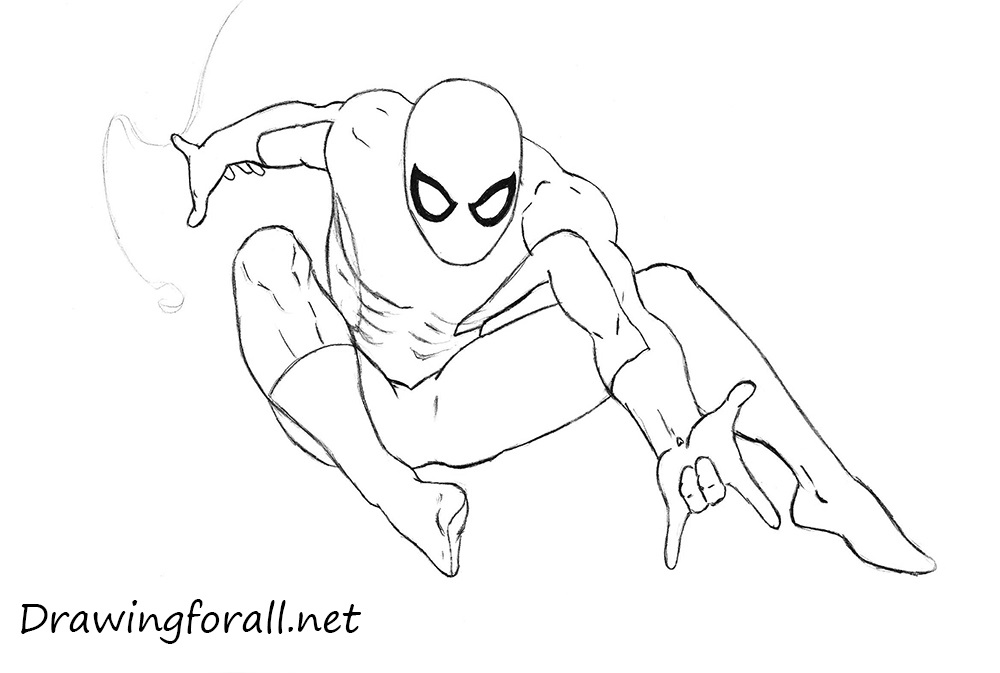 Drawn spider line drawing #8