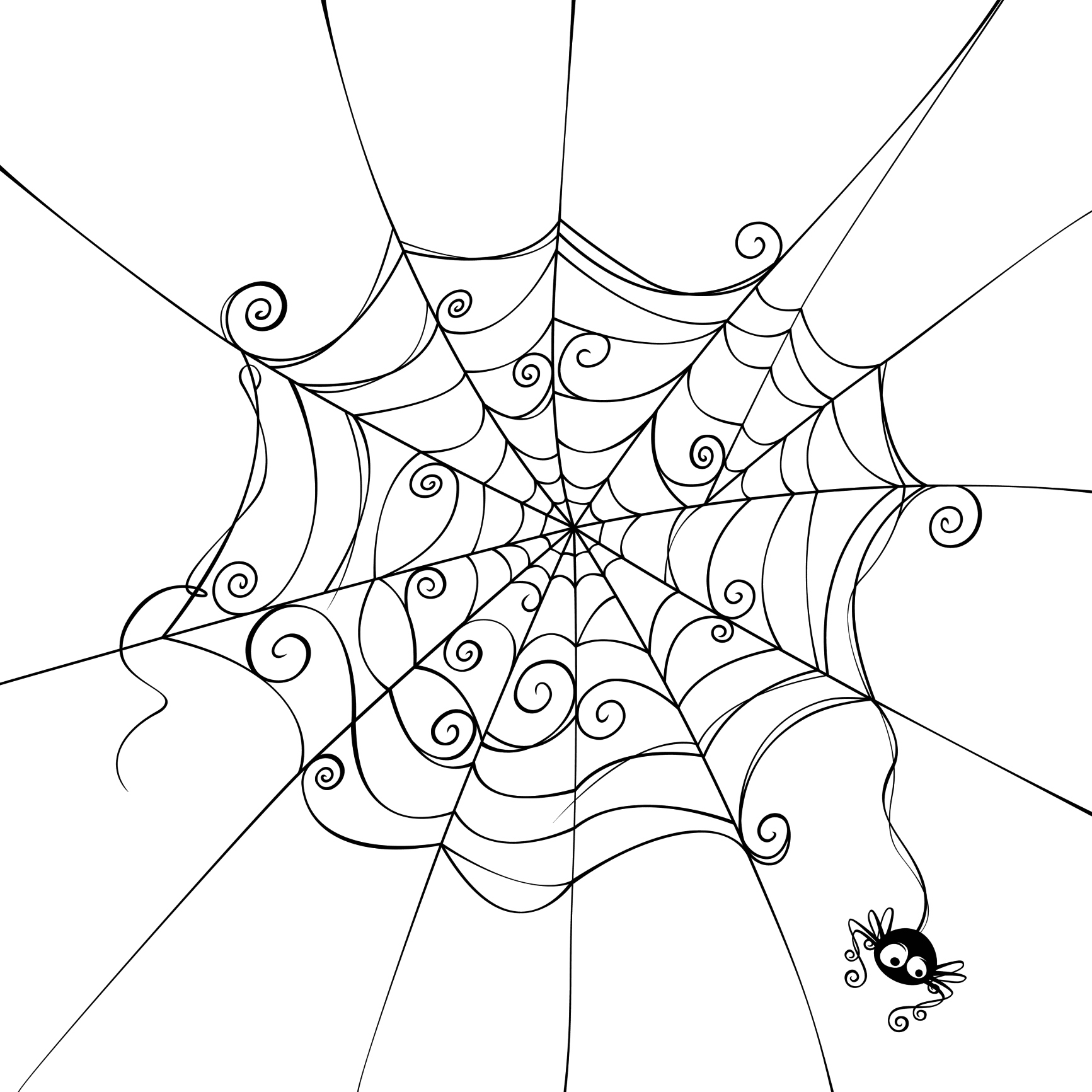 Drawn spider web cartoon Pencil sketch images pencil –