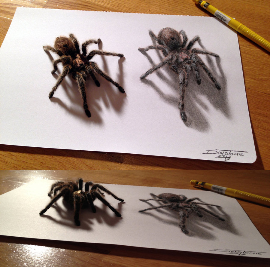 Drawn spider pencil By on DeviantArt Spider AtomiccircuS