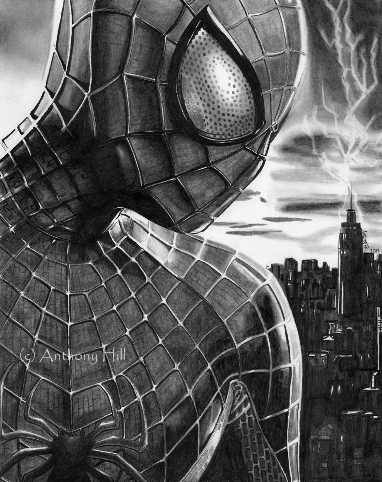 Drawn pencil spider Spider man Amazing Pencil Graphite
