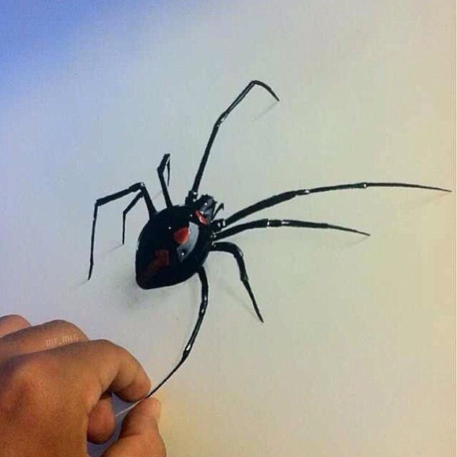 Drawn spider realistic Pinterest pencils Drawings) Art #drawing