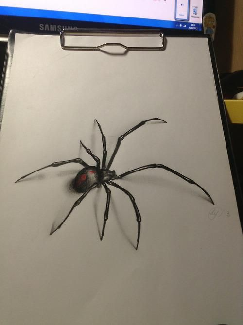 Drawn spider realistic Ideas 20+ drawing Awesome on