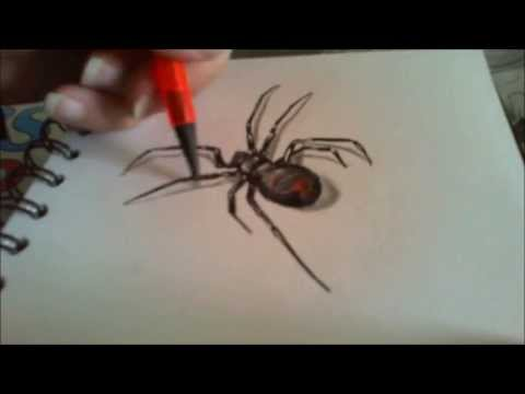 Drawn spider realistic YouTube Spider Draw; How Realistic