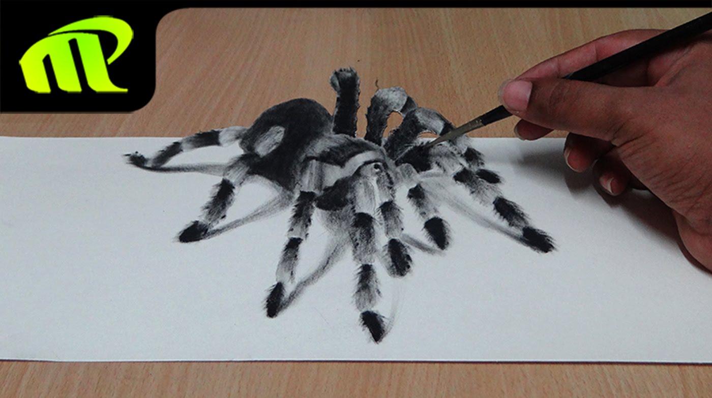 Drawn spider realistic Illusion Spider Illusion Art How