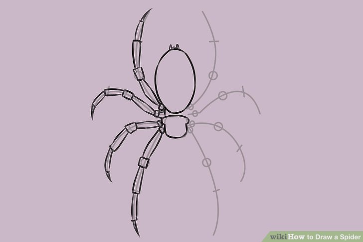 Drawn spider side view WikiHow a 5 Draw Step