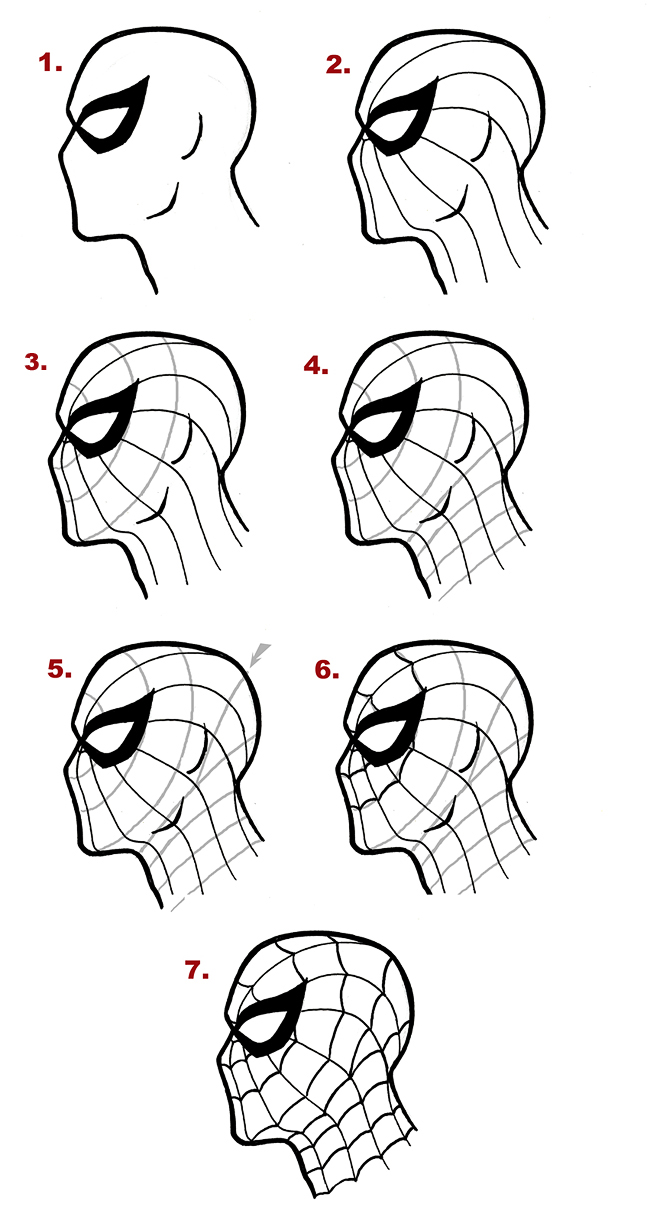 Drawn spider side view Webbing Costume the Spider of