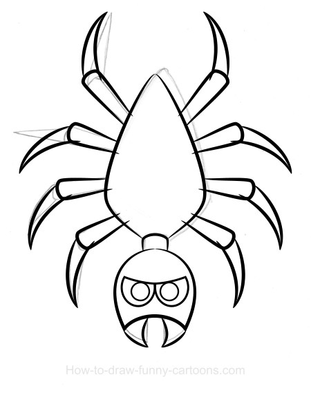 Drawn spider sketched Drawing Spider vector) + (Sketching