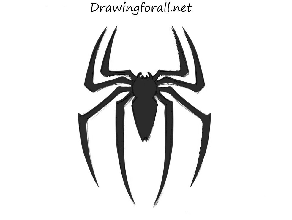 Drawn spider sketched Spider Man logo Logo DrawingForAll