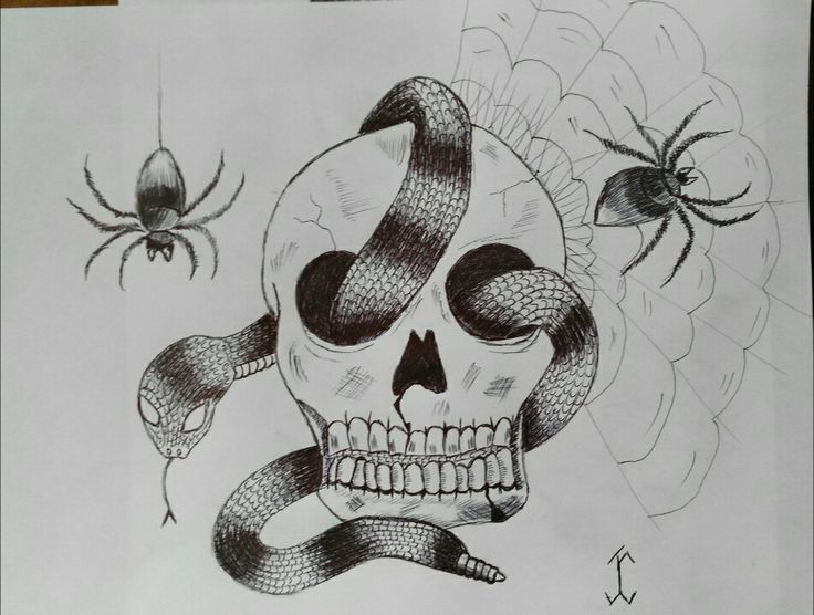Drawn spider snake #draw #art drawing #drawing #spider