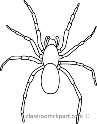 Drawn spider spider black and white #5