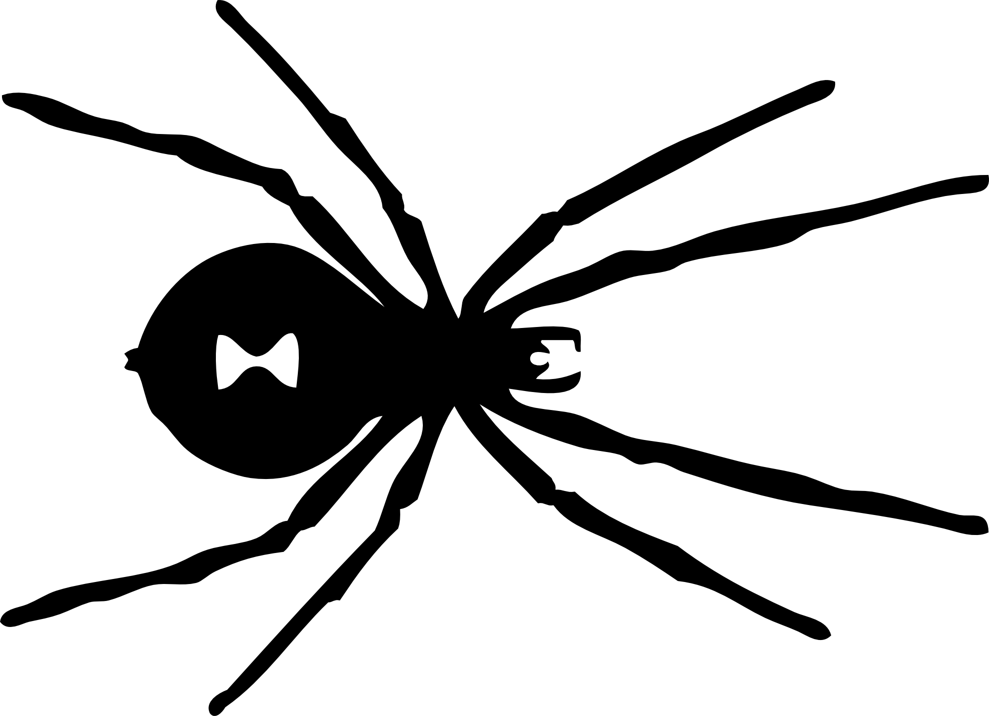 Drawn spider spider black and white #3