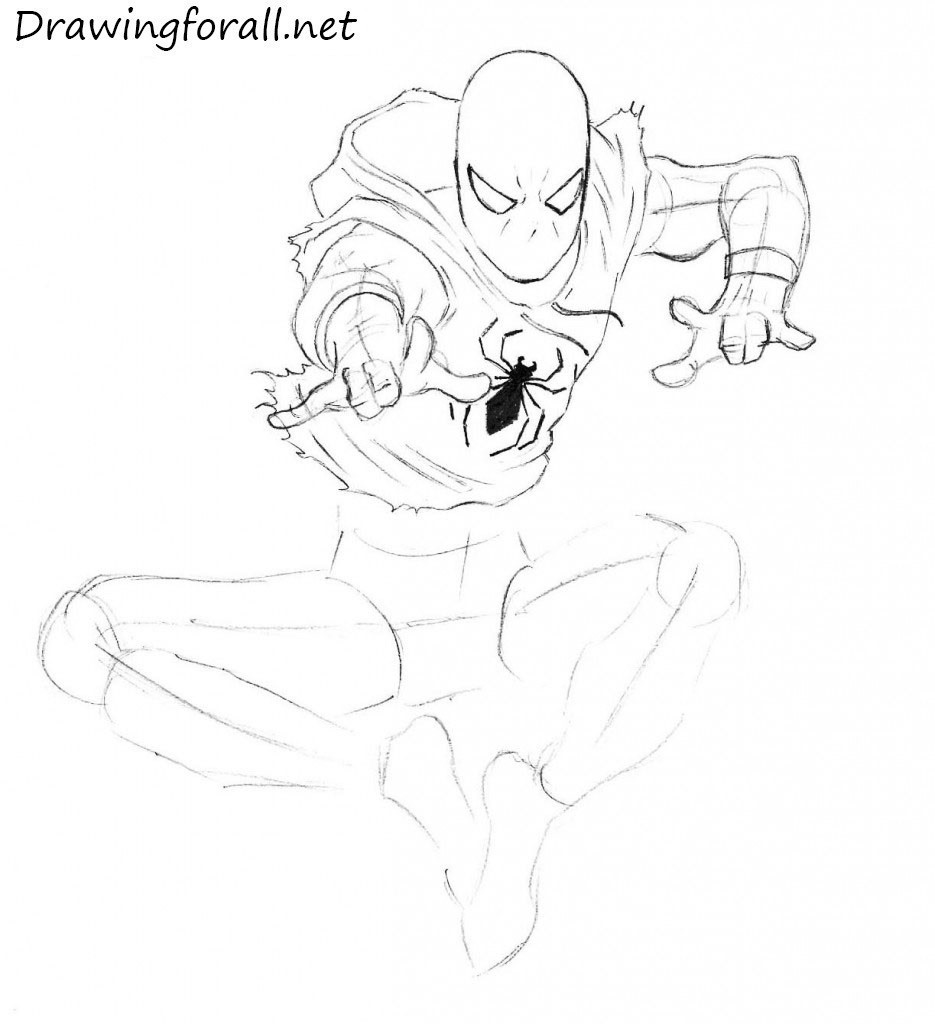 Drawn spider step by step #12