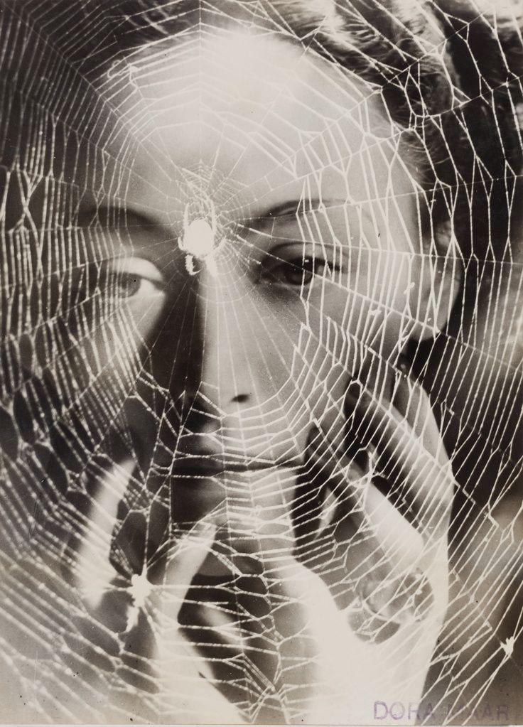 Drawn spider surrealism Spider 397 this PATTERN▐ Pinterest