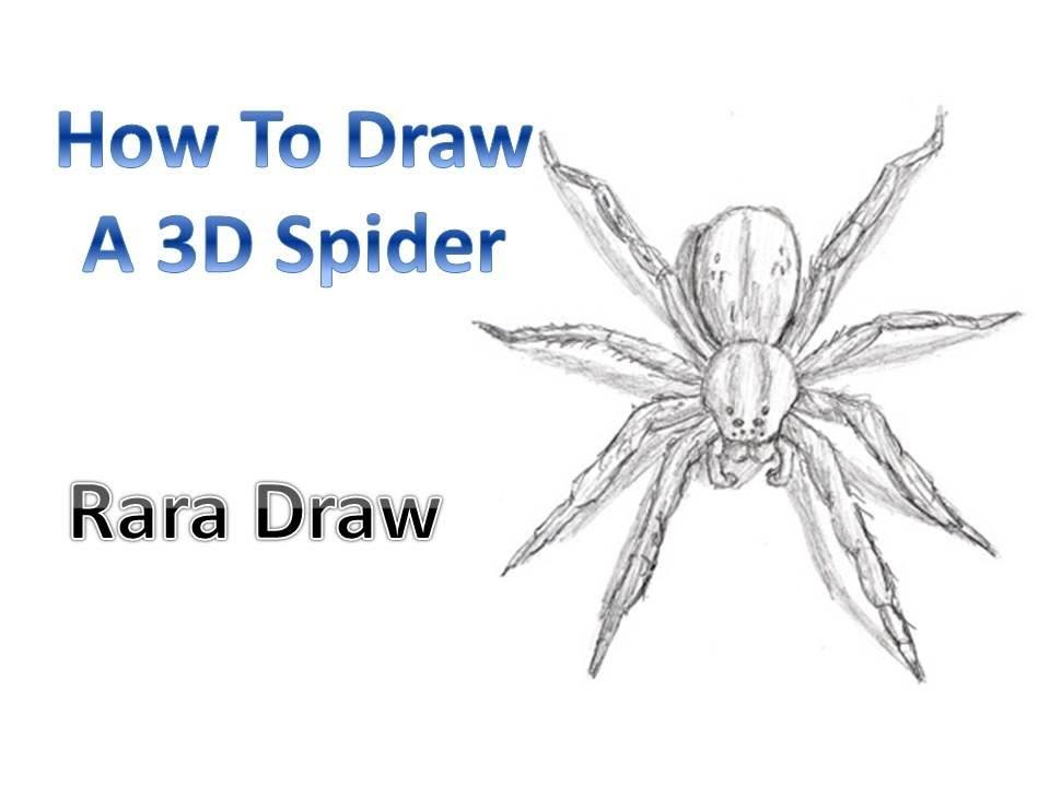 Drawn spider tarantula A Draw Spider How To