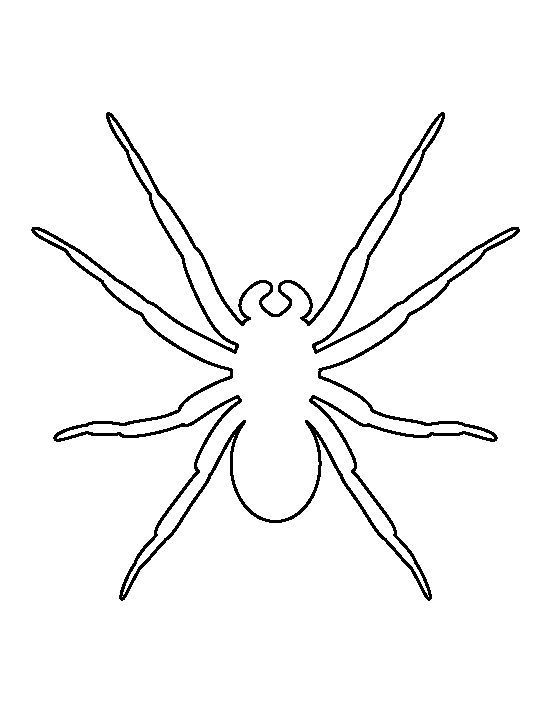 Drawn spider template Ideas pattern Pinterest and 20+