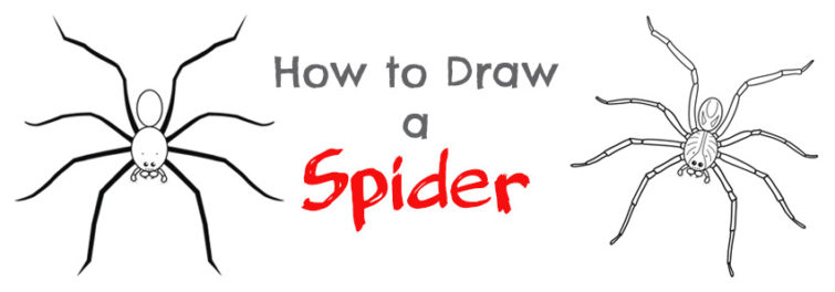 Drawn spider tiny #2