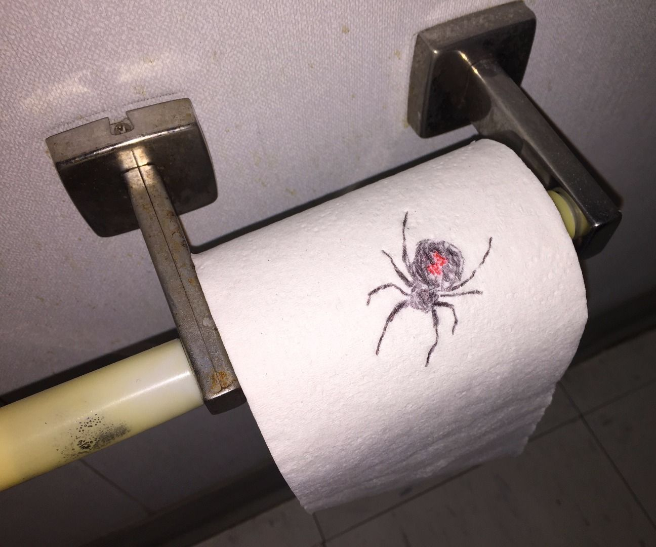 Drawn spider toilet paper On Spider Paper (with Prank
