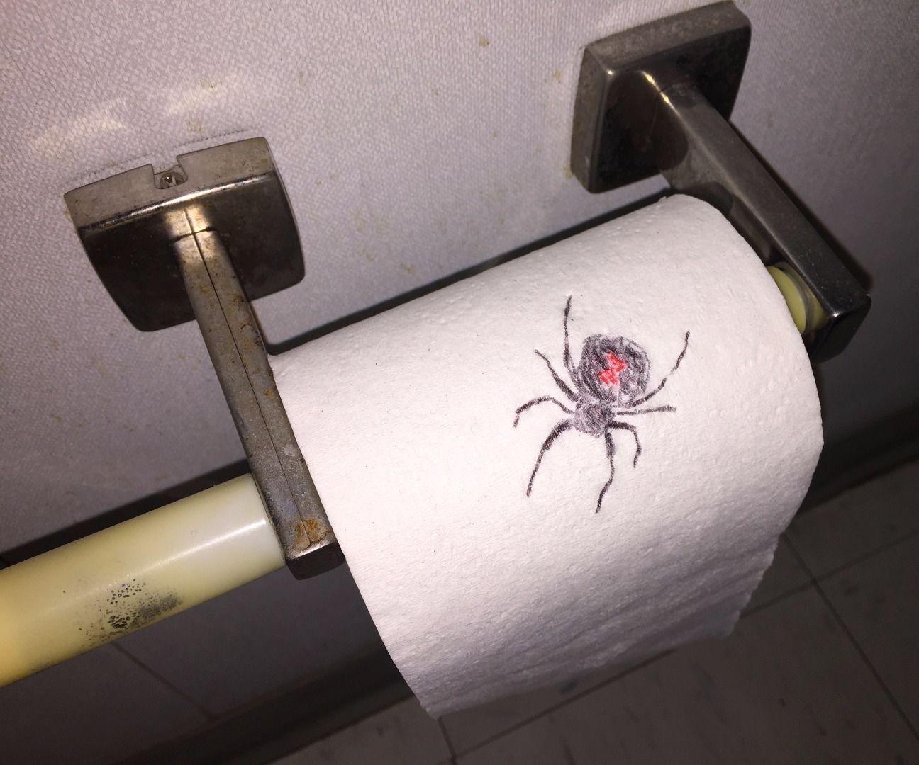 Drawn spider toilet paper #10
