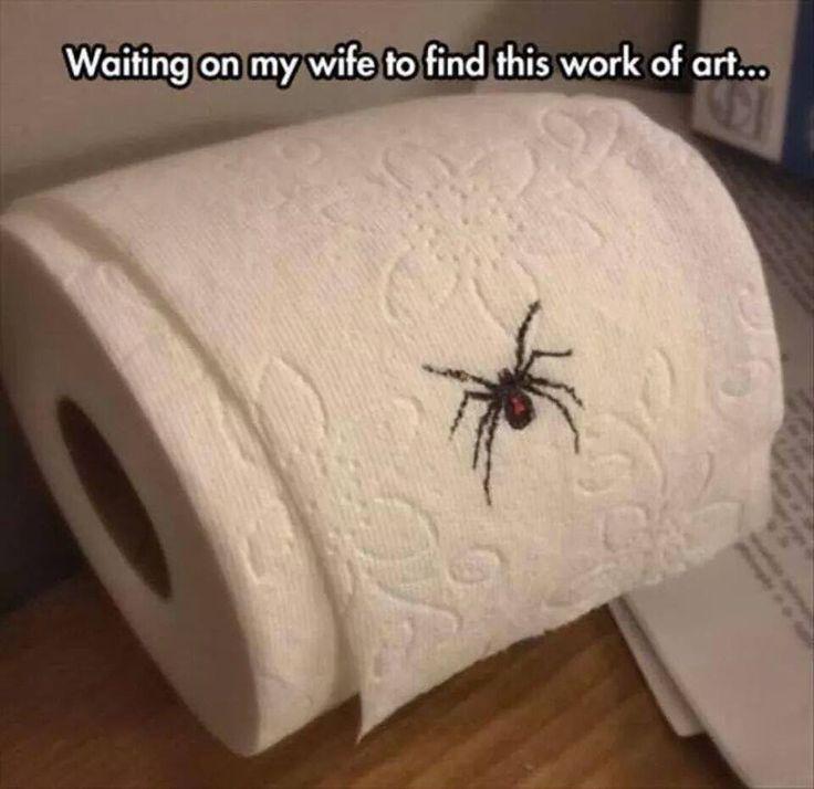 Drawn spider toilet paper #15