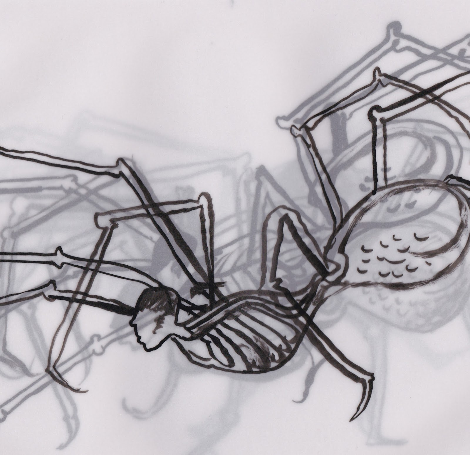 Drawn spider tracing On in Wings