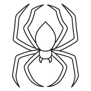 Drawn spider tracing About Board Spider Pinterest best