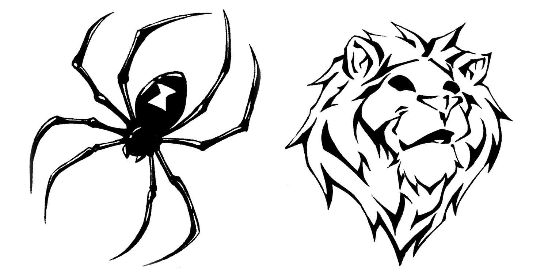 Drawn spider tribal music Com And Lion Spider Spider