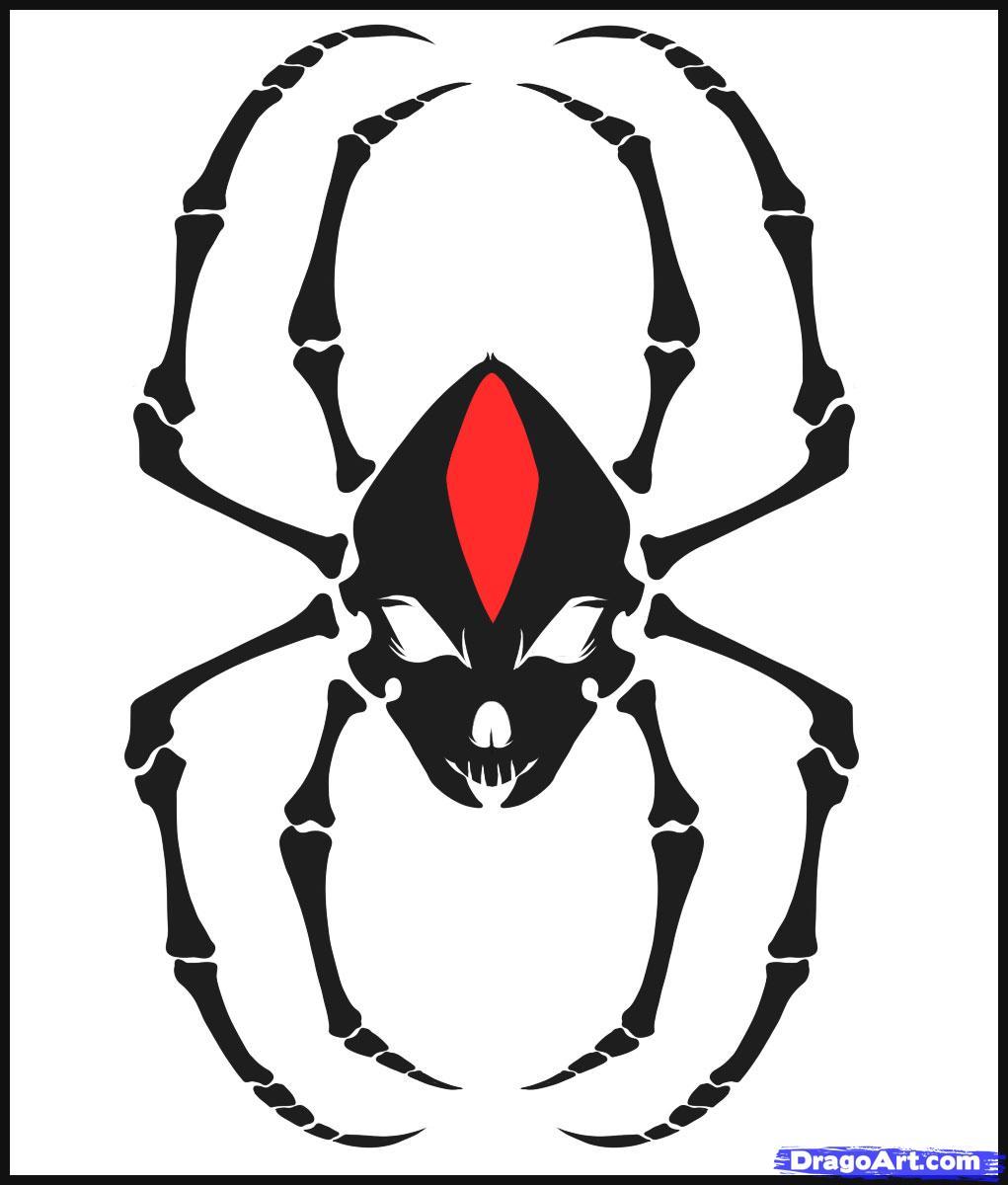 Drawn spider tribal music Skulls a skull Skull draw