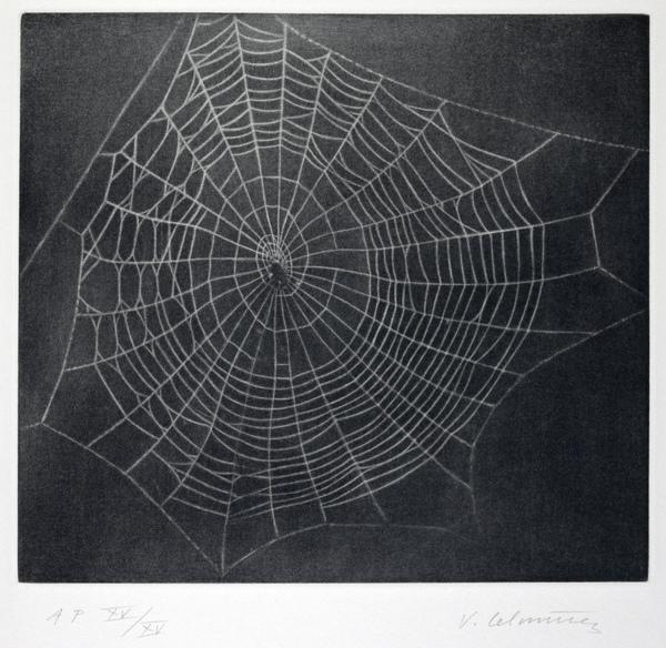Drawn spider web acid Of 1) 3) National Untitled