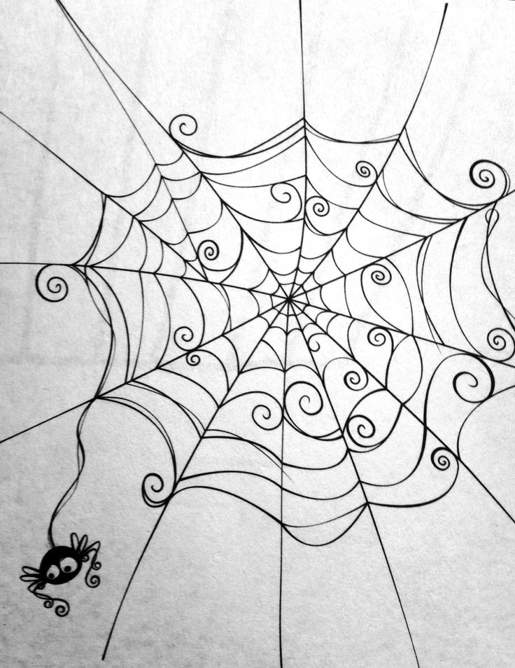 Drawn spider web cute Web Black Spider Spider web
