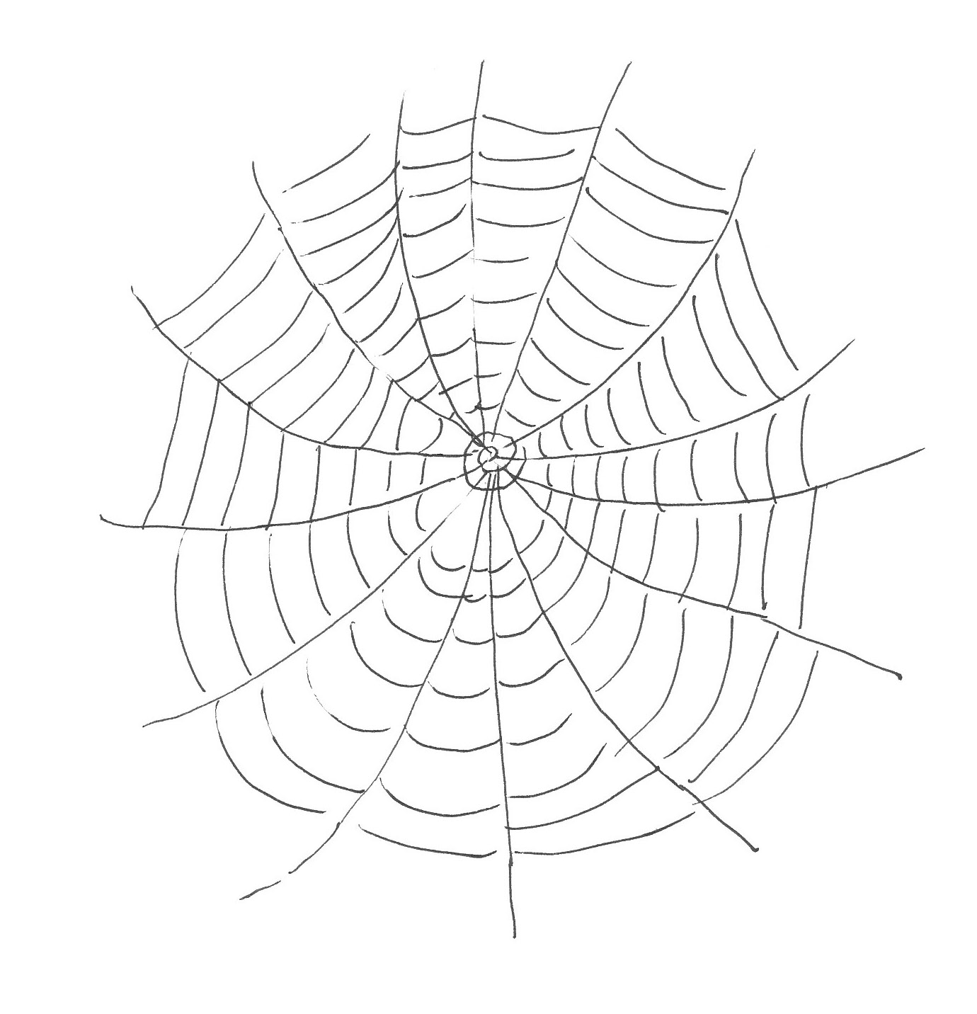 Drawn spider web detailed Web atrinrayaneh Page com Spider