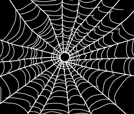 Drawn spider web drawing #9